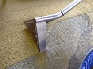 Чистка ковролина моющим пылесосом