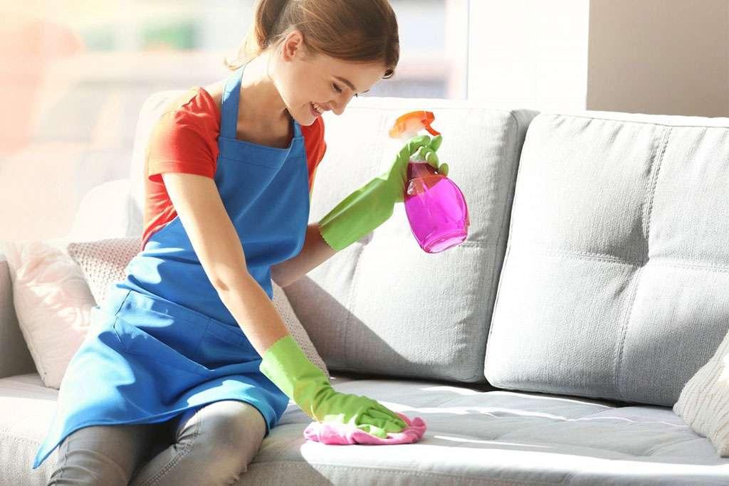 Как почистить диван от мочи