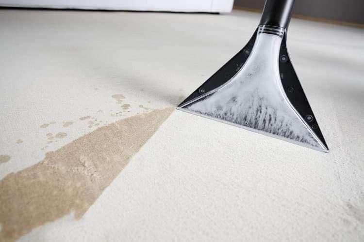Чистка ковров моющим пылесосом