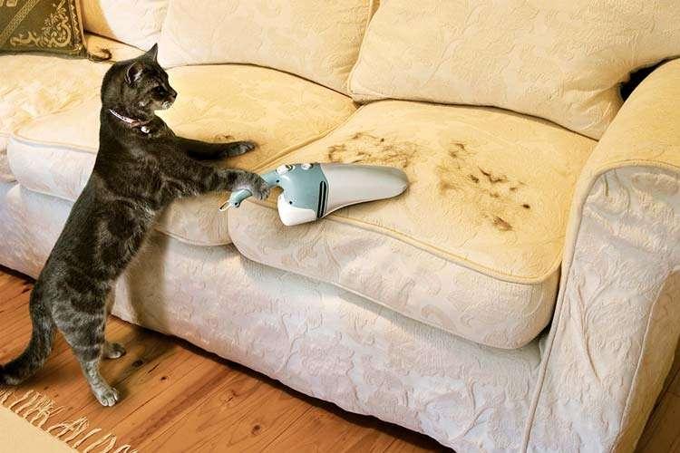 Как почистить диван из микрофибры